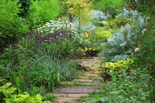 イギリスの庭2