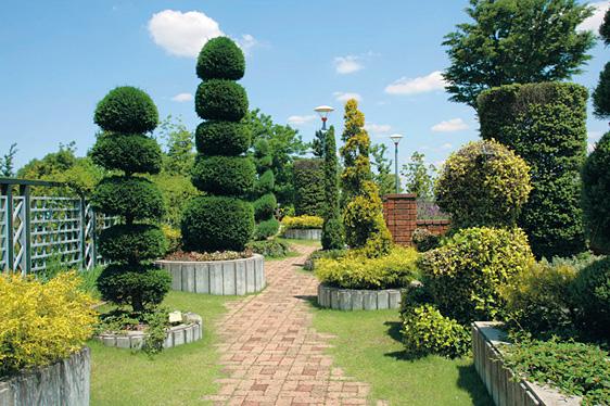 イタリアの庭3